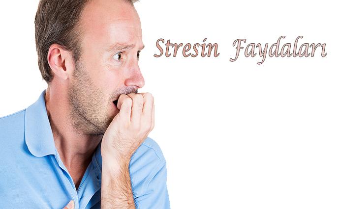 Stresin yararları