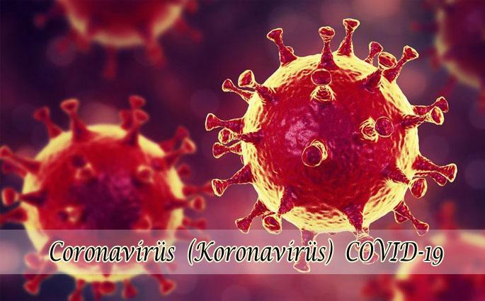 Dünyanın en büyük felaketlerinden koronavirüs